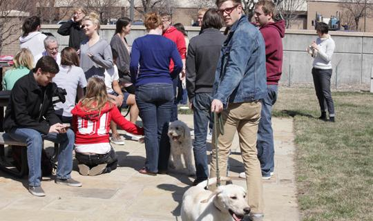 Students and dogs